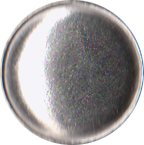 Large French Domed Pewter Button, 1